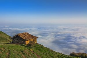 Jangel-e Abr (Cloud Forest) in Iran where you top the clouds