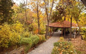 Jamshidiyeh park in Autumn, tehran
