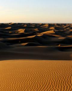 2 Days in Mesr Desert (Exclusive tour)