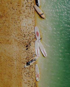 Paddle board in the Mangrove Forest of Qeshm