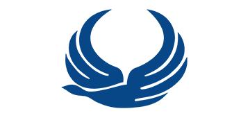 Iran Aseman Airlines  logo
